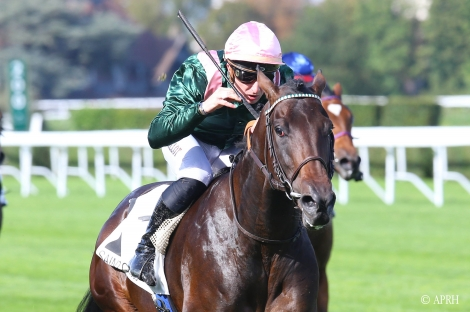Impressive performance from Sacred Life in the Gr.3 Prix Thomas Bryon !