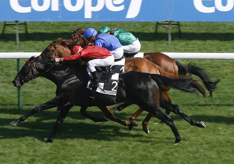 Fuissé - vainqueur du Prix du Moulin de Longchamp Gr.1